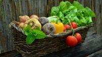 Nutrition et santé : quelques règles pour manger sainement