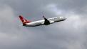 Turkish Airlines:un avion percute des oiseaux et atterrit en urgence