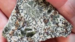 Une météorite découverte en Algérie entre au Guinness des records