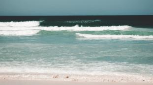 Vidéo. Un homme frappé sur une plage d'Alger à cause d'un parasol