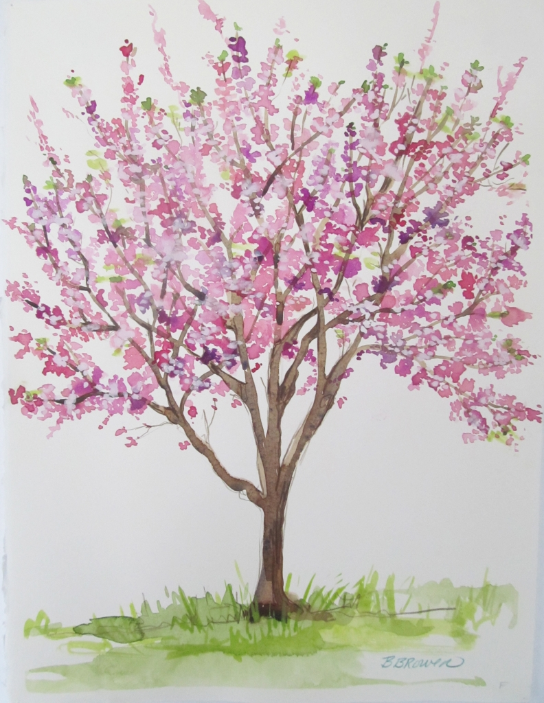 beauty of watercolor cherry
