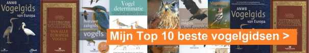 top 10 de allerlaatste