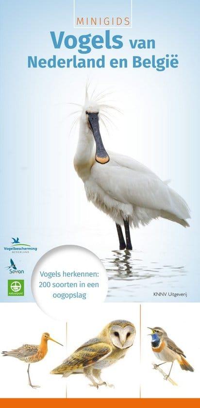 #5. Minigids vogels van Nederland en België