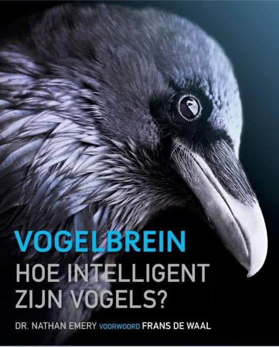 Vogelbrein