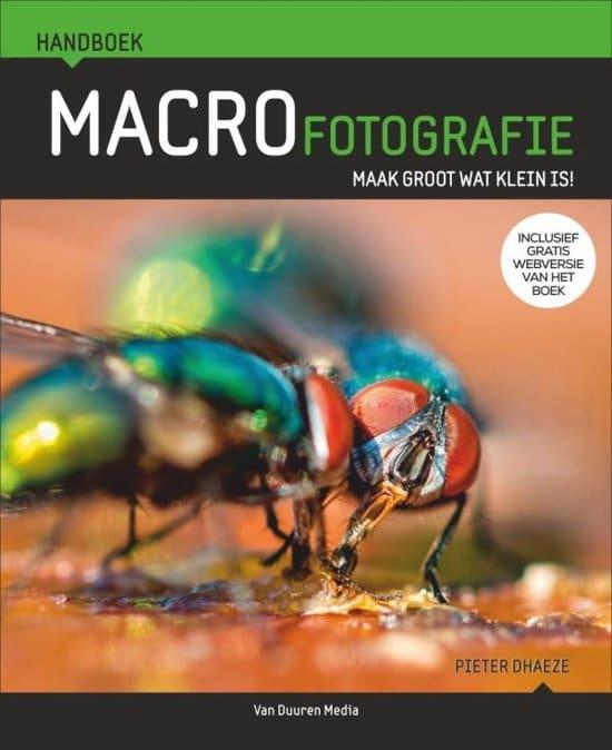 beste tijd om insecten te fotograferen
