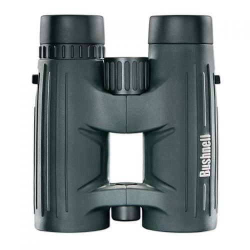 review bushnell excursion 10x42 HD