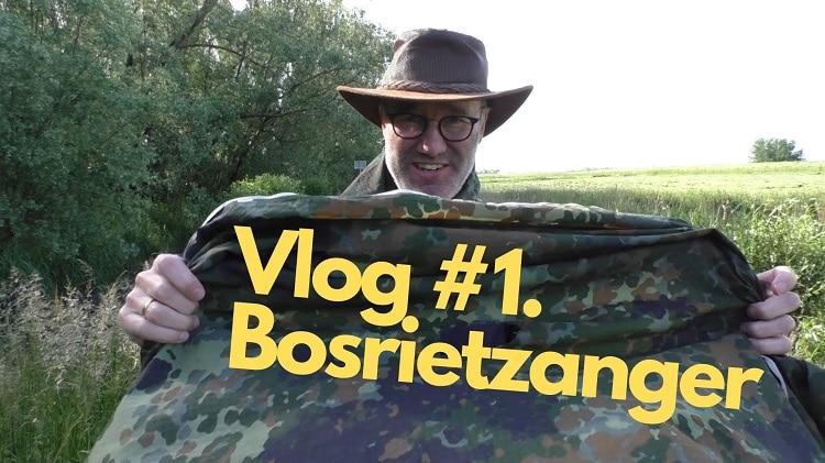 Vlog de visdief jako van gorsel Bosrietzanger