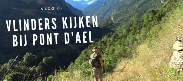 Vlog 28 vlinders kijken bij pont d'ael