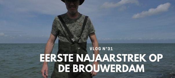 najaarstrek op de Brouwersdam