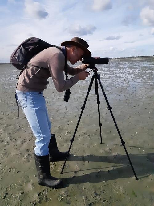 Vogelexcursie Grevelingendam