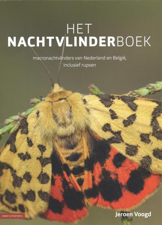 recensie het nachtvlinderboek jeroen voogd