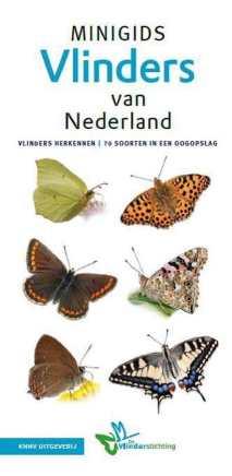 recensie minigids vlinders