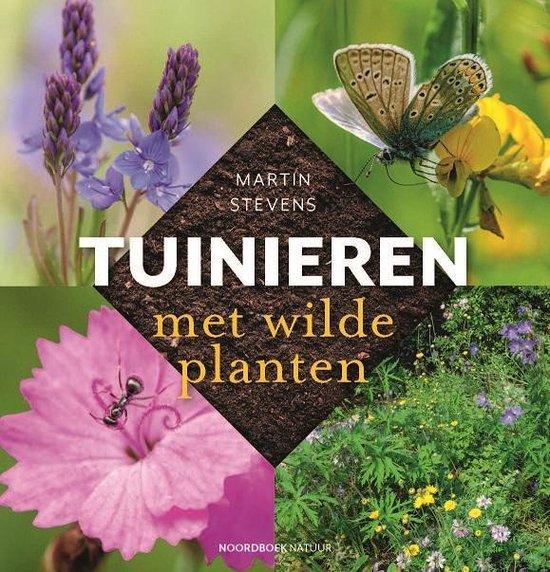 De top tien wilde planten voor in je tuin