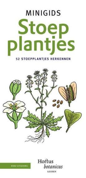 recensie minigids stoepplantjes hortus botanicus leiden