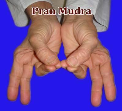 PranMudra
