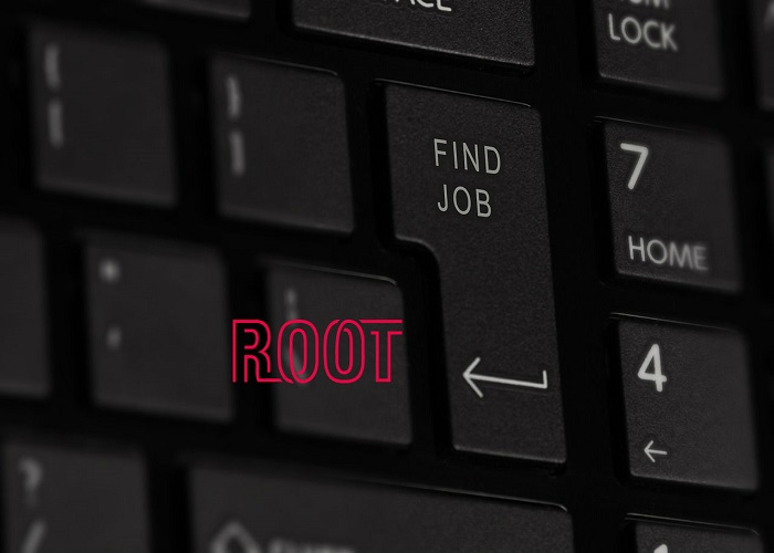 Root: Software Developer
