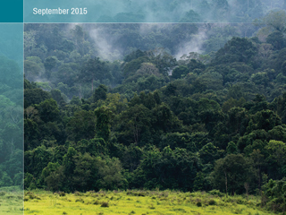 The Impacts of International REDD+ Finance