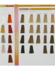 Nuancier color touch also wella professionals swatches rh vision hair