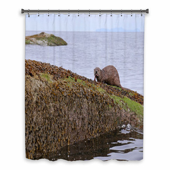 a north american river otter custom size shower curtain