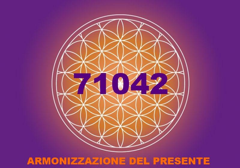 fiore-vita 71042