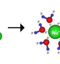 figure 3 nacl in water the ionic bonds between the na and cl ions are broken and the ions separate the surrounding water molecules form hydrogen bonds  [ 1720 x 592 Pixel ]