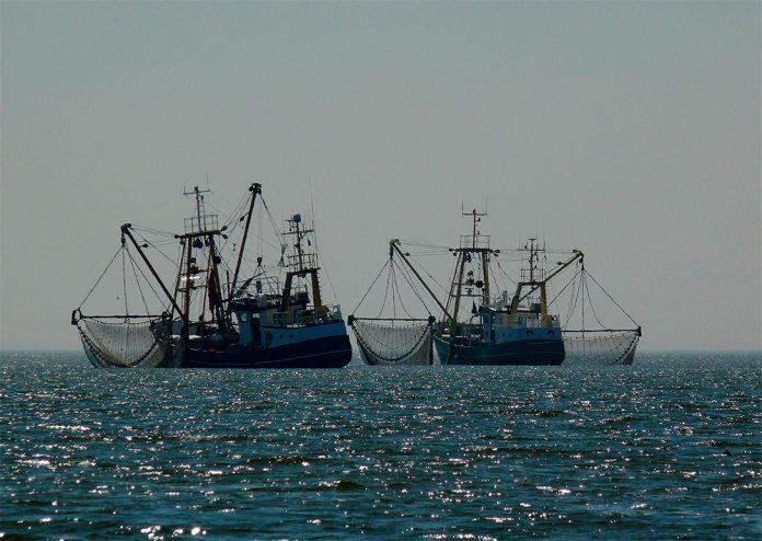 Grandes flotas de pesca explotan el 55% de los océanos, según ...