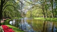 Keukenhof Flower Gardens : Lisse - Netherlands   Visions ...