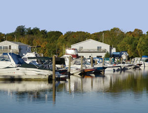 chester point marina