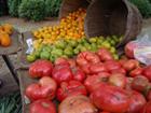 Lexington Farmers Market 2014