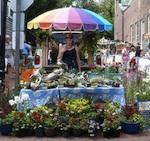 Nantucket Farmers and Artisans Market 2014