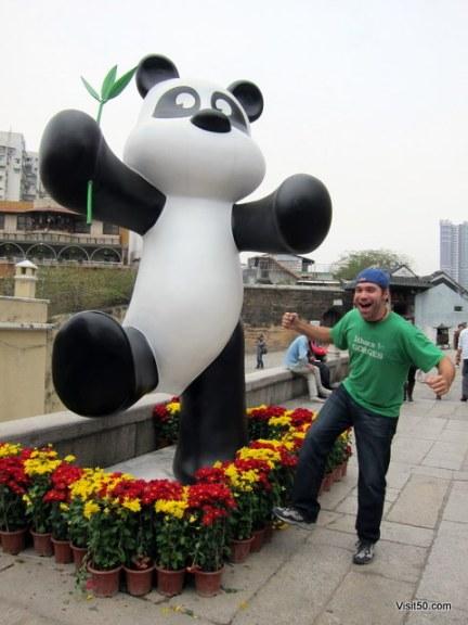 Pandas in Macau!