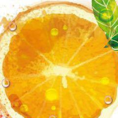 Fiesta de la Naranja 2016, el próximo 15 de Mayo
