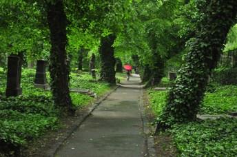 cemiterios-10