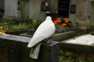cemiterios-16