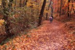 outono-03