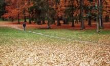 outono-05