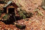 outono-11