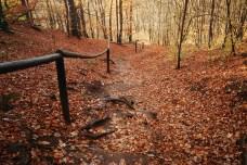 outono-12