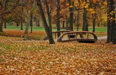 outono-22
