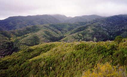 Parques Naturales en La Gomera