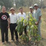 Forestry officials discuss tree planting project in Banteay Chhmar Temple