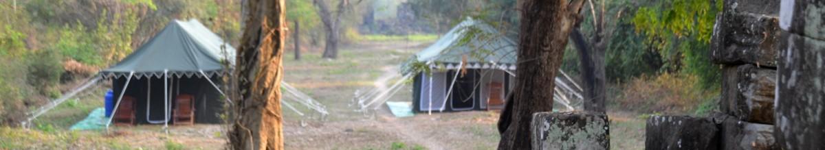 Tent Safari