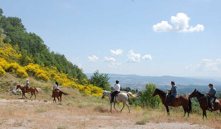 Trekking a Cavallo-Due laghi-Visit CastellAzzara