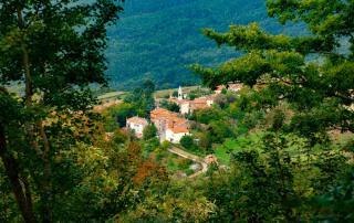 Selvena-Castell'Azzara-www.vistcastellazzara.com