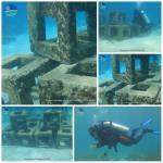 Del Carmen Artificial Coral Reefs