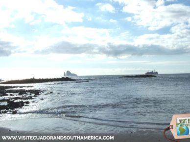 Galapagos - Ecuador © Carmen Cristina Carpio Tobar