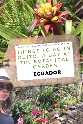 things-to-do-in-quito-a-day-at-the-botanical-garden
