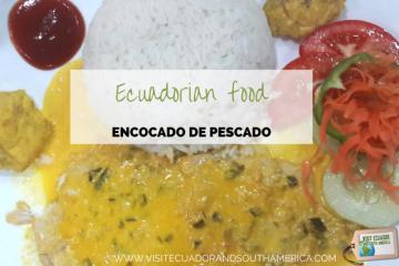 ecuadorian-food-encocado-de-pescado