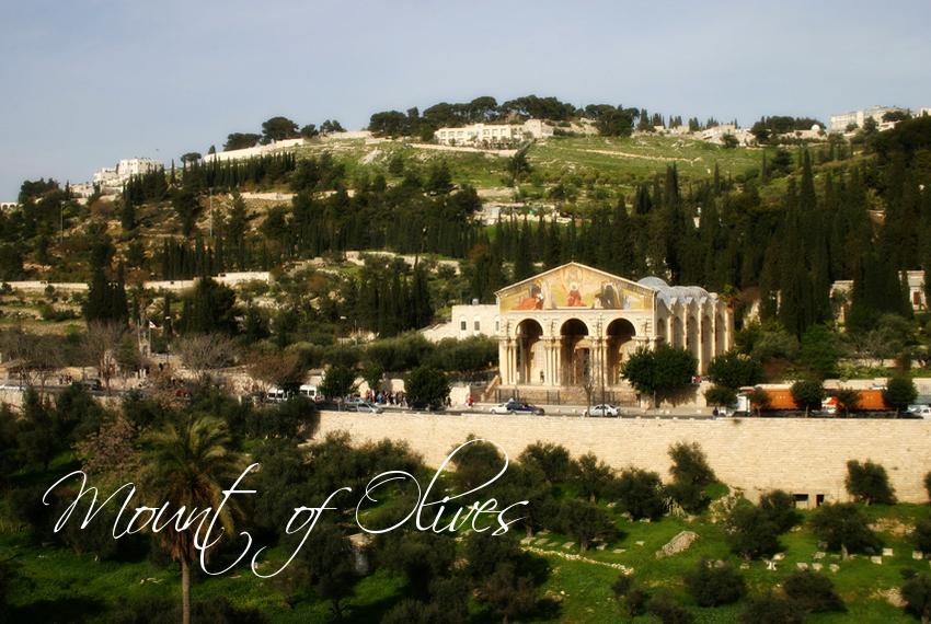 Tour a Jerusalen + Belen 100 $ desde Jerusalén.