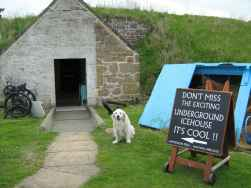 heritage dog Rosie welcomes visitors to the Findhorn Icehouse